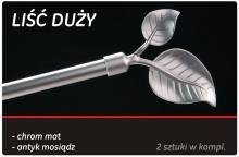 lisc_duzy