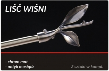 lisc_wisni